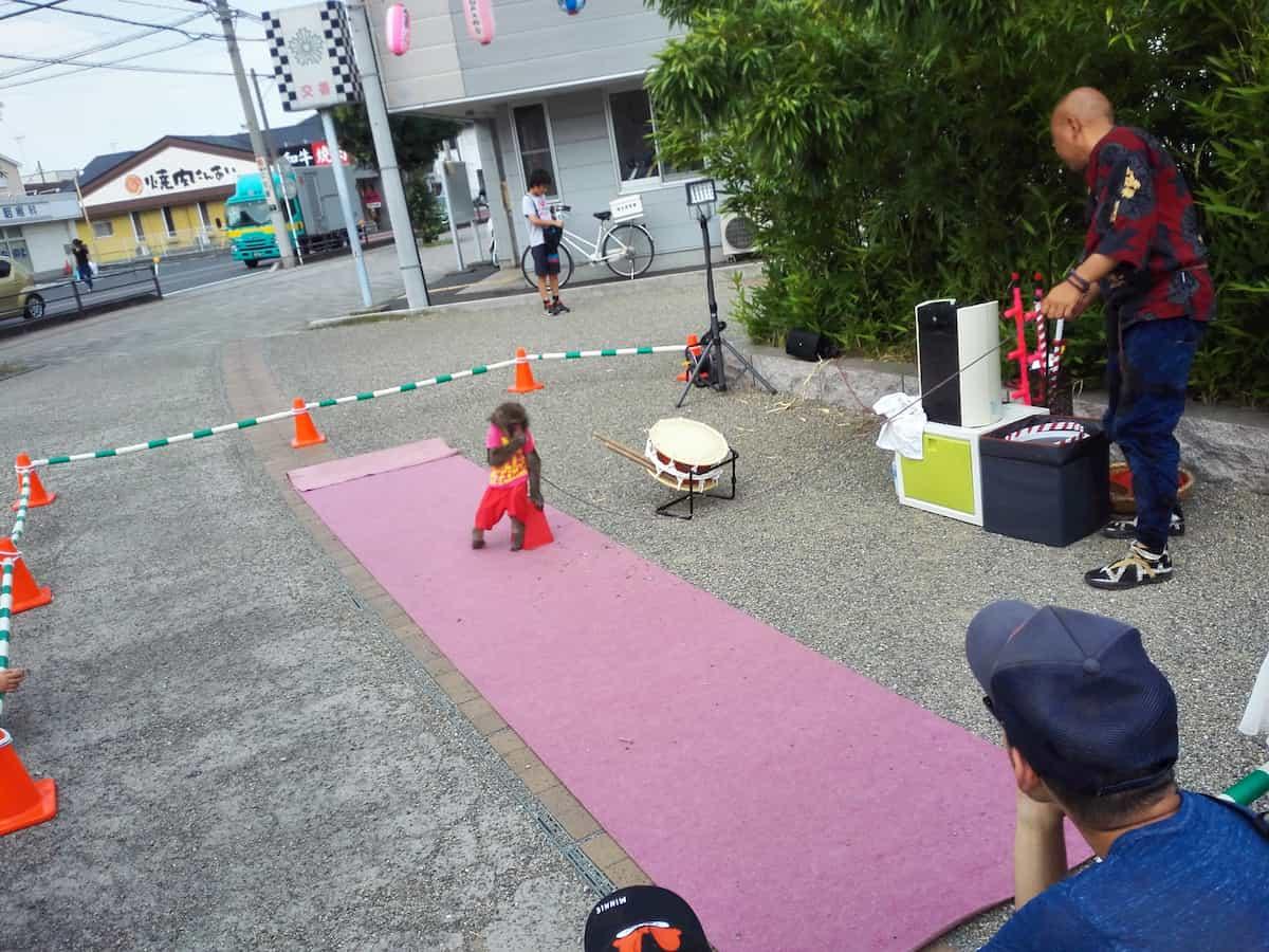 福岡中央公園前で披露される猿まわし