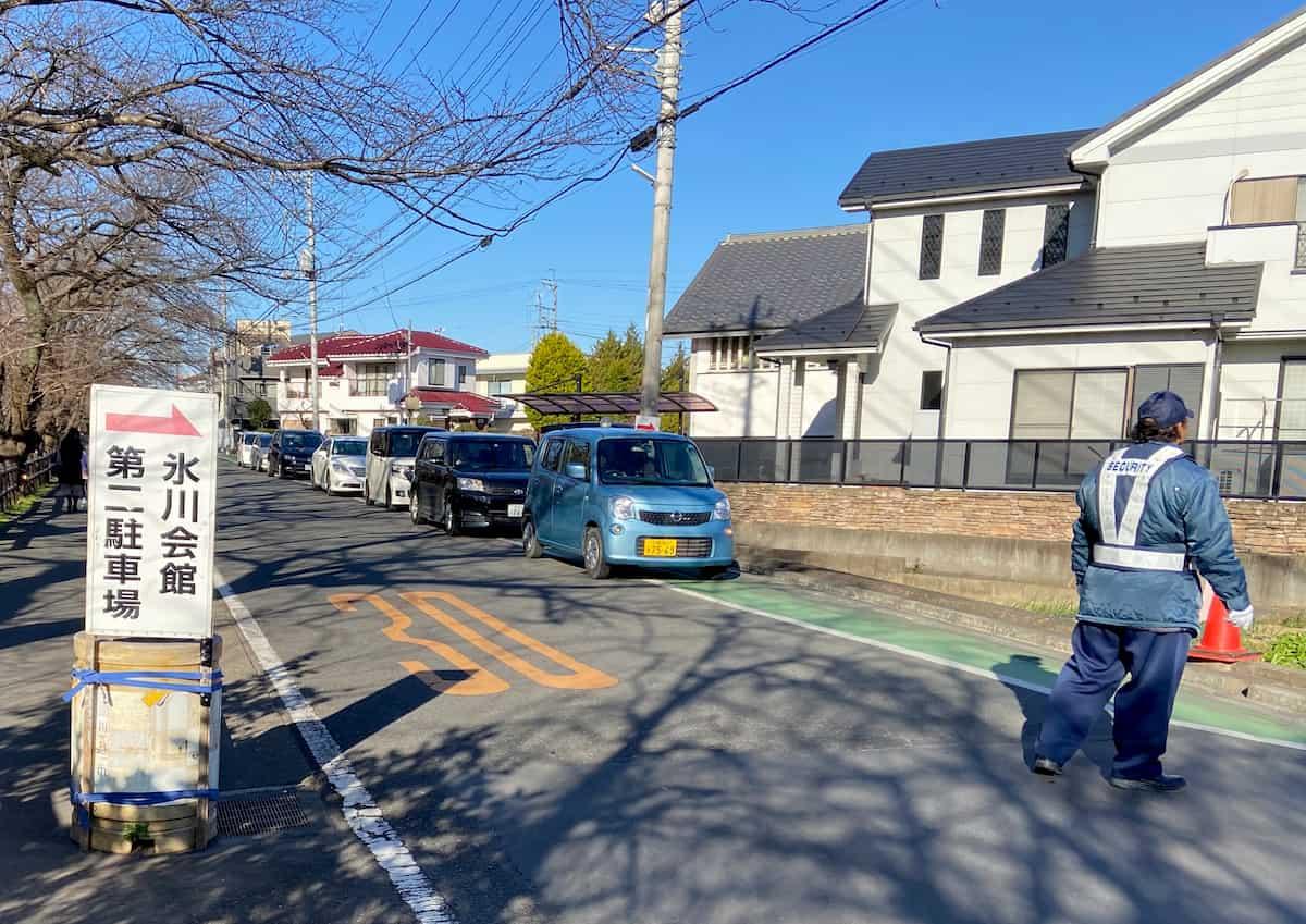 氷川神社の駐車待ちをする車の行列