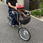 1歳から乗せられる!安くておすすめの子ども乗せ自転車「Birthday」