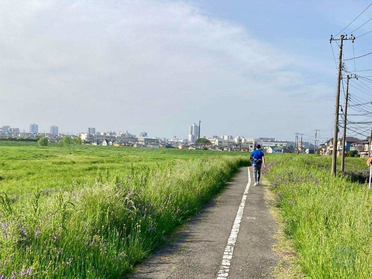 寺尾遊水池 遊歩道で歩く人