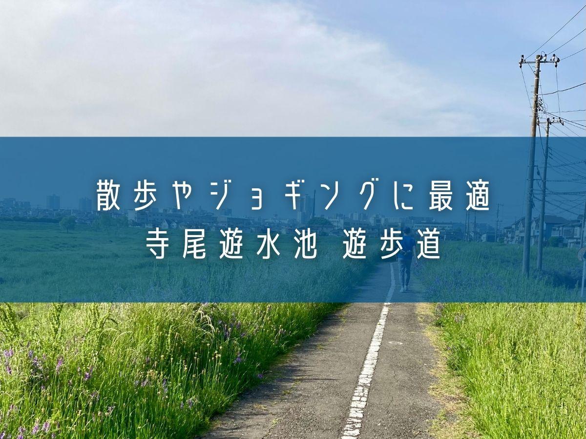 散歩やジョギングに最適。川越市「寺尾遊水池 遊歩道」