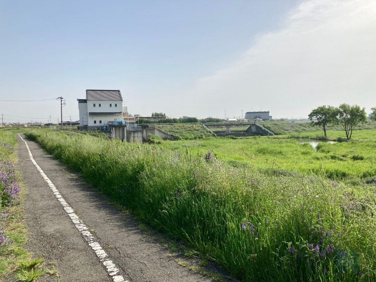 寺尾遊水池 遊歩道