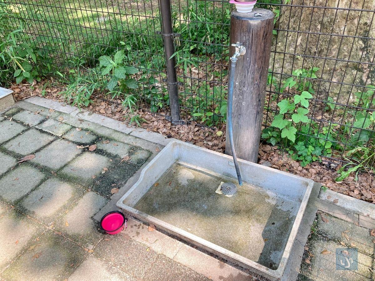 ドッグランの水道