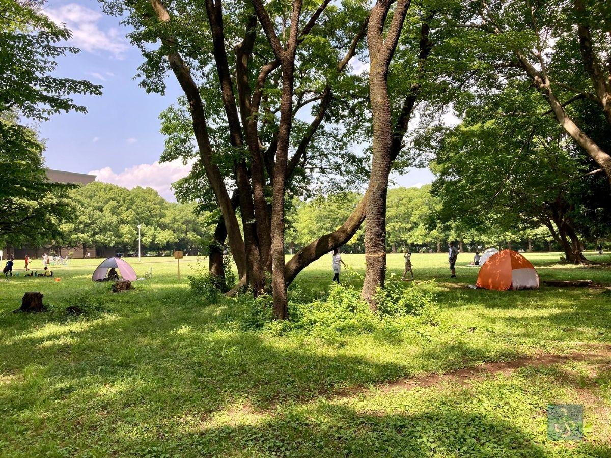 所沢航空記念公園のテント
